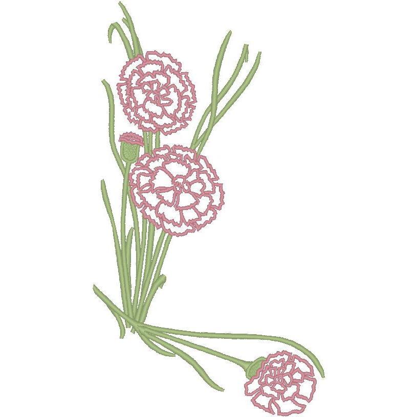 Corner Carnations