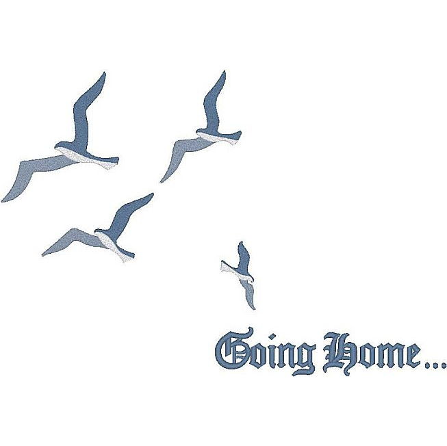 New Birds/Going Home