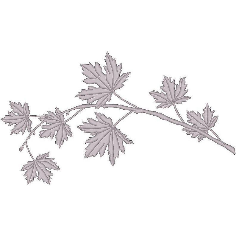 Maple Leaves (PM)