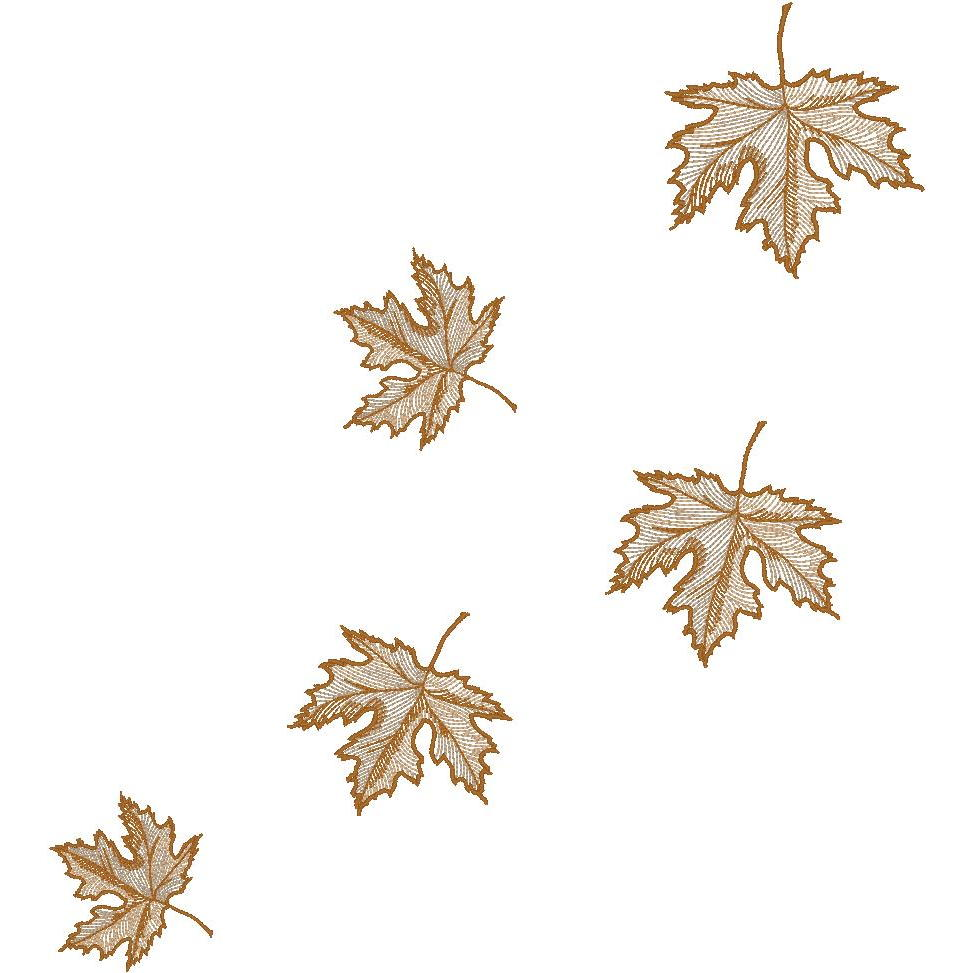 5 Falling Maple Leaves