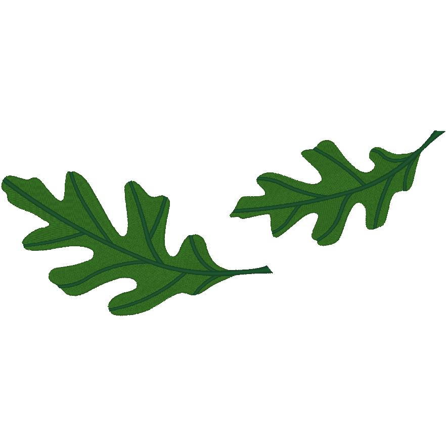 2 Large Oak Leaves