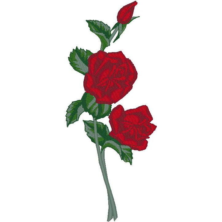 Balboa Rose (PM)