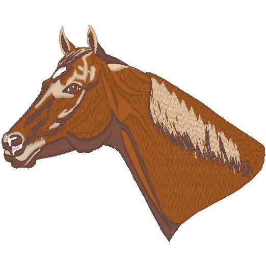 Quarterhorse (PM)