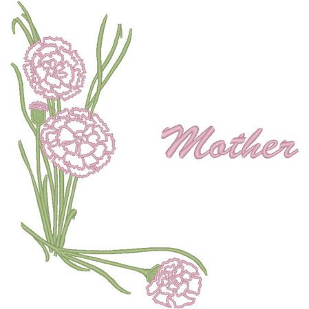 Carnation/Mother