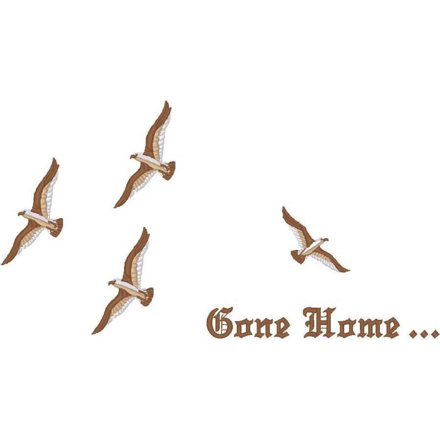 Birds/Gone Home